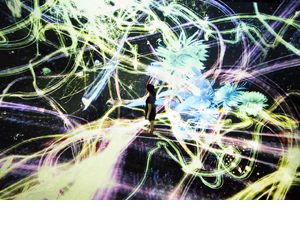 "Welcome to ""the portal to the universe""! ―""The Universe and Art"" work #1: teamLab"